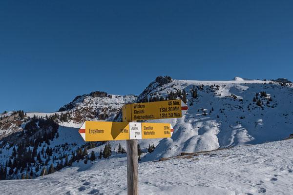 Prächtiges Schneeschuhgelände führt zur Standflue empor