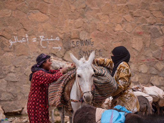 Berberfrauen beim beladen ihrer Mulis