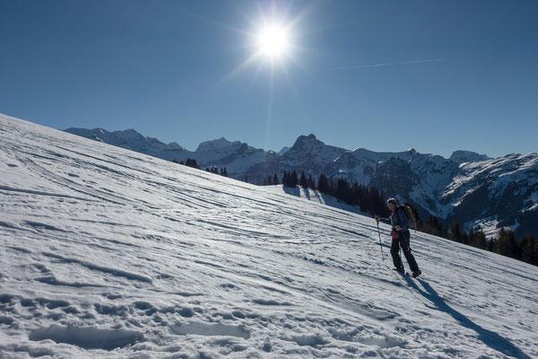 ...während visavis doch noch ein Hauch von Winter spürbar ist. Blüemlisalp, Doldenhorn, Ärmighore, rechts der Giesigrat