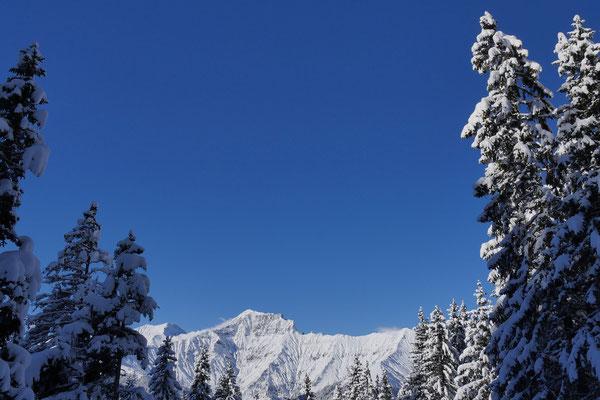 Zwischen winterlich verschneiten Tannen prägen das Gsür und links das Albristhorn dieses Foto