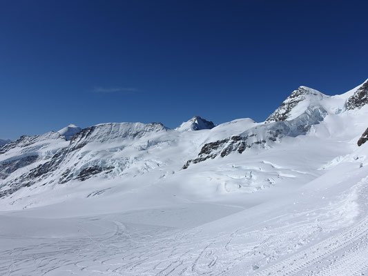 Aletschhorn, Kranzberg, Gletscherhorn, Louwihorn und Rottalhorn bilden eine wunderschöne Skyline an diesem prächtigen Tag