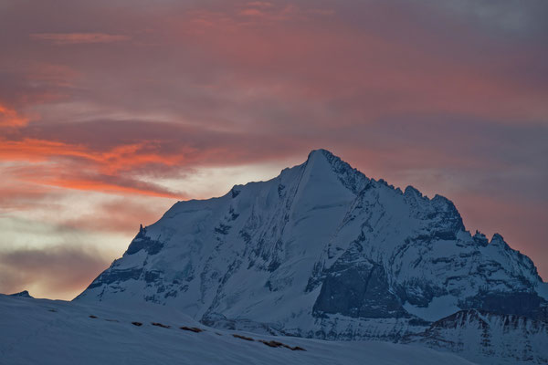 Morgenrot über dem Doldenhorn