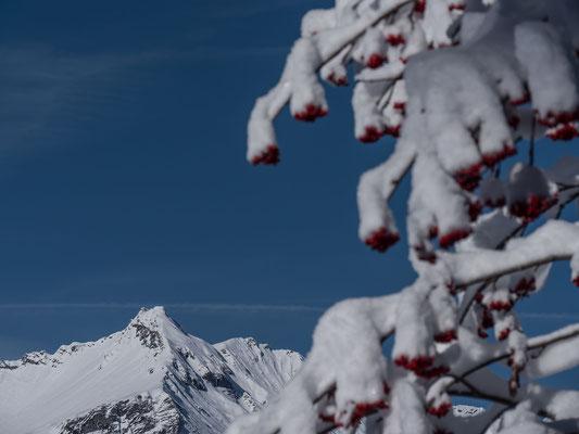 Cooler Gipfel, das Ladholzhore
