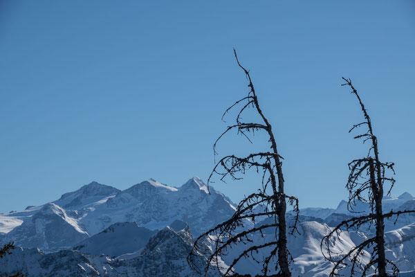 Der Ausblick auf Wetterhorn, Mittelhorn und Rosenhorn kann sich sehen lassen