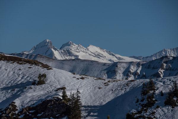 Imposanter Blick zur Wetterhorn Gruppe