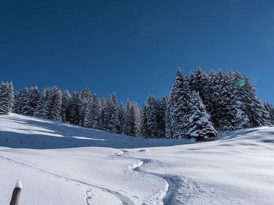 Auch im unteren Teil liegt genug Schnee