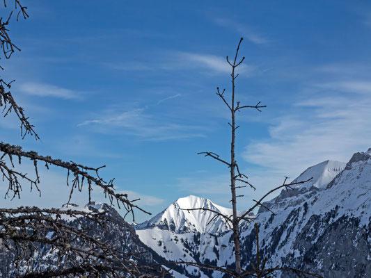 Blick vom Hore am Rüederigs zum Morgeberghorn, links die Standflue und die Wätterlatte, rechts der First