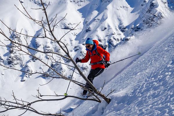 Ein paar Büsche geben eine abwechslungsreiche Slalomlinie vor