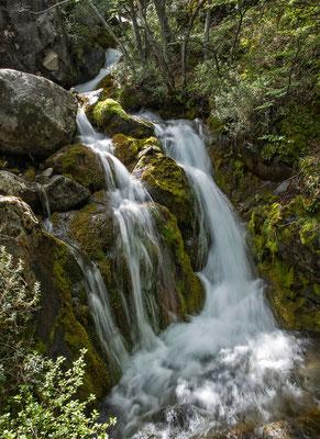 Kristallklares Wasser rauscht keine 20 Meter hinter der Moräne durch lichten Wald
