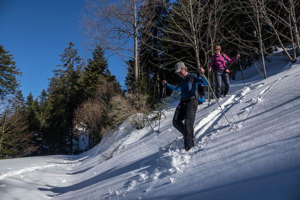 Ein letzter Downhill von Beat, dann ist die begehbare Alpstrasse  in der Wildschutzzohne erreicht