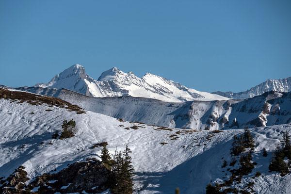 Prachtvolle Aussicht auf Wetterhorn, Mittelhorn und Rosenhorn