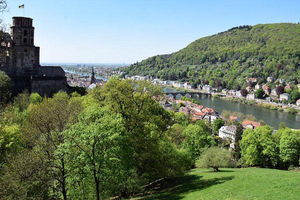 Vue générale    -    Eidelberg est contruit sur les 2 rives du Neckar, un des plus importants affluents du Rhin
