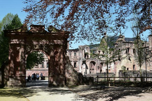 Le Château d'Eidelberg un château fort du 13ème siècle  (Château en grès rouge partiellement en ruines)