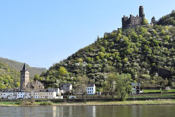 Sankt Goarshausen : Château de Maus (Château de la souris)