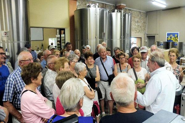 Rencontre avec un producteur local d'huile d'olive