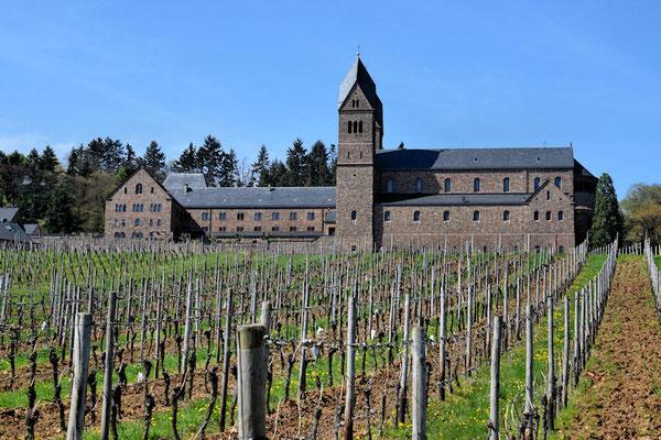 Nous sommes dans la région viticole de Rheingau où se cultive principalement le resling et le pinot noir