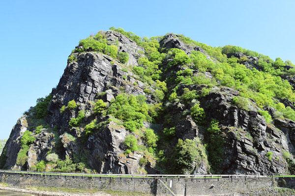 Le Rocher de la Loreleï culmine à 132 mètres au dessus du Rhin