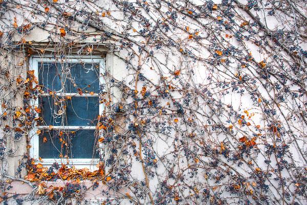 Colmar, Francia 2014