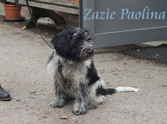 Zazie Paolina ist knapp fünf Monate alt