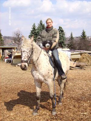 Schapendoeswelpe Jonas darf mit Frauchen Manuela reiten