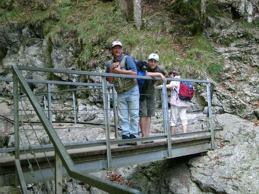 Schapendoeswelpe Eika wird noch über die Brücke getragen