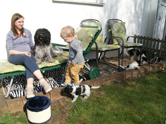 Schapendoeswelpen vom V-Wurf mit meinen Kindern Sonja und Benedikt