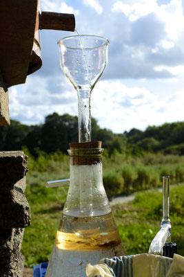 L'essencier (distillation de lavandin)