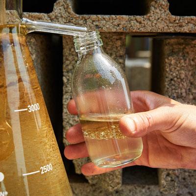 Récupération d'huile essentielle de camomille romaine