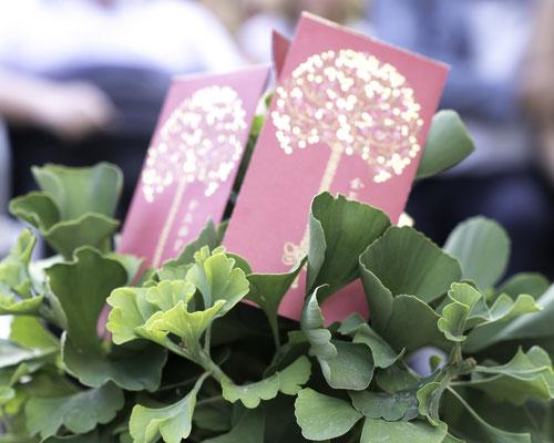 """Glücksbäumchen mit roten chinesischen Glücksumschlägen """"Luck-Luck"""" zu einer Willkommnsfeier"""