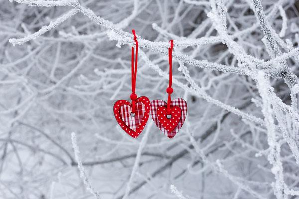 Herzen in frostigen Zweigen