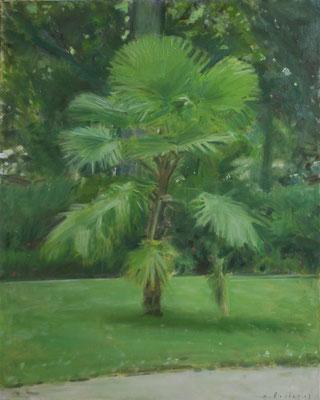Arbre 9. By Nicolas Borderies, oil on canvas, 80 x 65 cm, 2018.