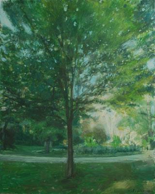 Arbre 6. By Nicolas Borderies, oil on canvas, 81 x 65 cm, 2018.