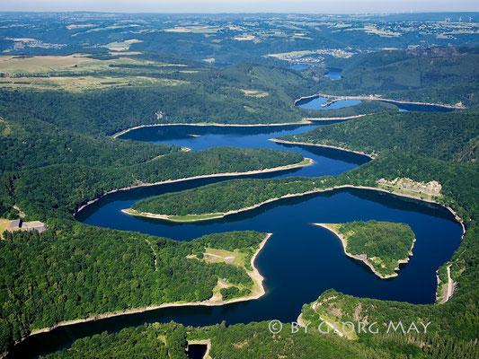 """Der Urftsee im Nationalpark Eifel wird auch """"Eifelamazonas"""" genannt."""