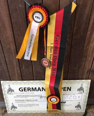 Bronze Medallie Trail Jugend - Score 217