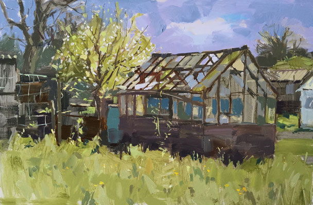 Pear tree and greenhouse