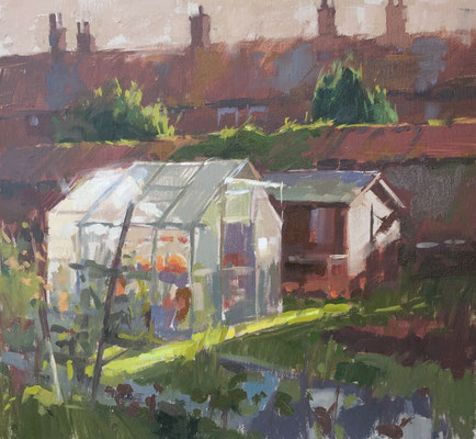 Early morning, allotments at Mill Hill