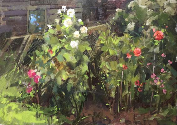Dahlias at White House Farm (SOLD)