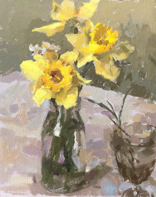 French garden daffodils