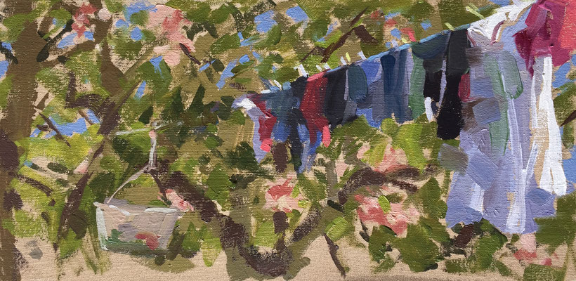 Washing line and apple blossom