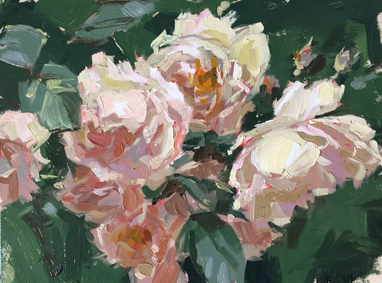 Pemberton roses at Gunby (SOLD)