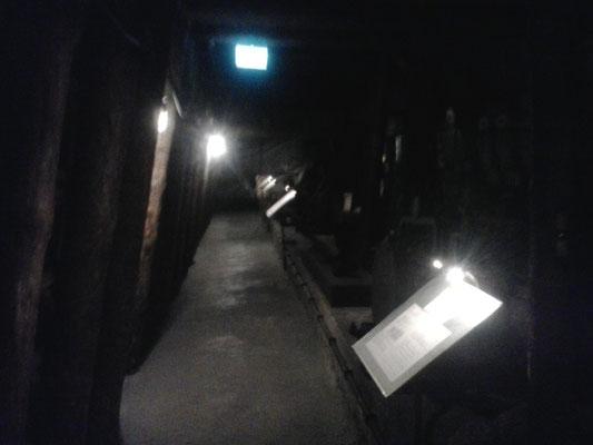Die Schauanlage im Schloss Burgk, Freital zeigt den letzten Stand der Technik mit dem auf Willi Agatz gearbeitet wurde