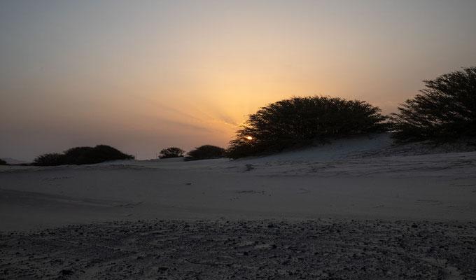 Weiße Wüste von Viana