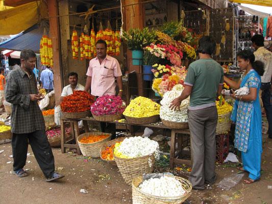 Goa - Blütenstand auf dem Markt