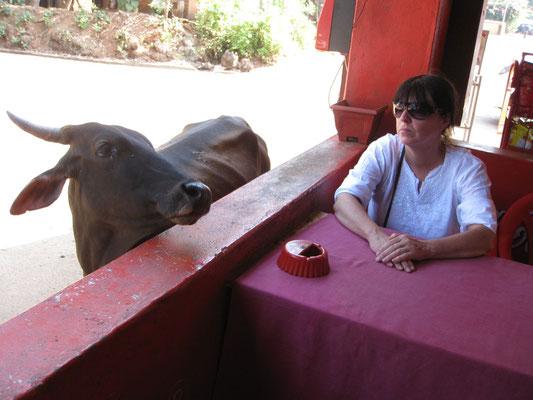 Blickkontakt im Kaffee in Goa