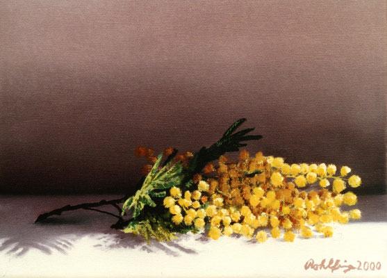 2000 Mimosenzweig Öl auf Leinwand 18x24cm
