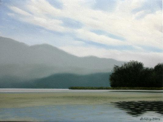 2004 Lago di Varese3 Öl auf Leinwand 30x40 cm