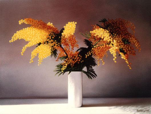 2000 Mimosenstrauch Öl auf Leinwand 50x60 cm