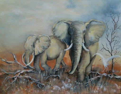 aquarell - elefanten