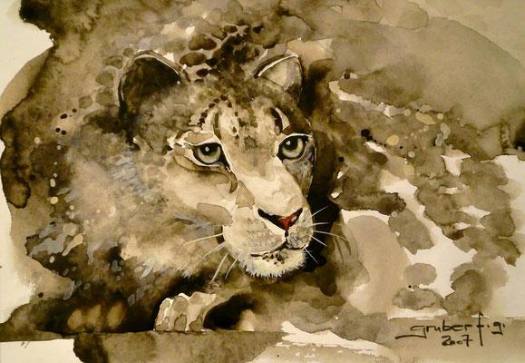 aquarell - schneeleopard