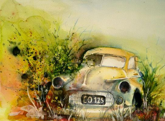 aquarell - oldtimer rostlaube 3